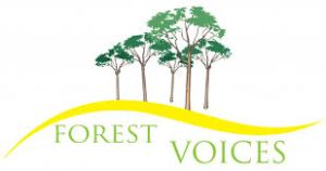 Forest Voices Choir